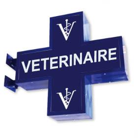 Croix enseigne de vétérinaire lumineuse